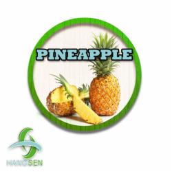 Pineapple - Hangsen