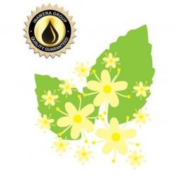 Elderflower (Inawera)
