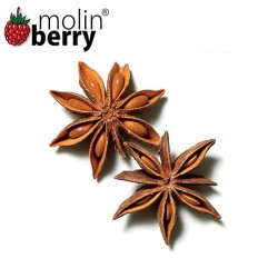 Anise Star (Molinberry)