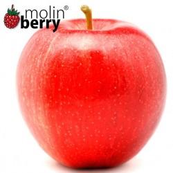 Eden Apple (Molinberry)