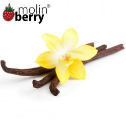 Epic Vanilla (Molinberry)