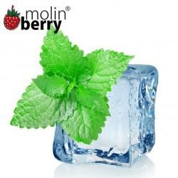 Ice Mint (Molinberry)