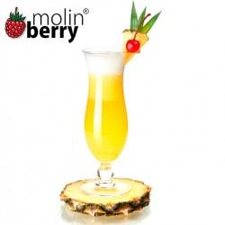 Malibu Pinacolada (Molinberry)