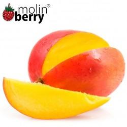 Tropical Mango (Molinberry)
