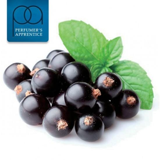 Black Currant (The Perfumers Apprentice)
